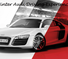 Winter Audi Driving Experience