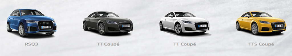 Winter Audi Driving Experience modelos