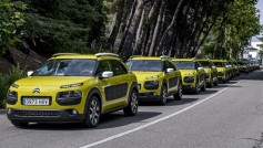 Citroën C4 Cactus solidario con el banco de alimentos